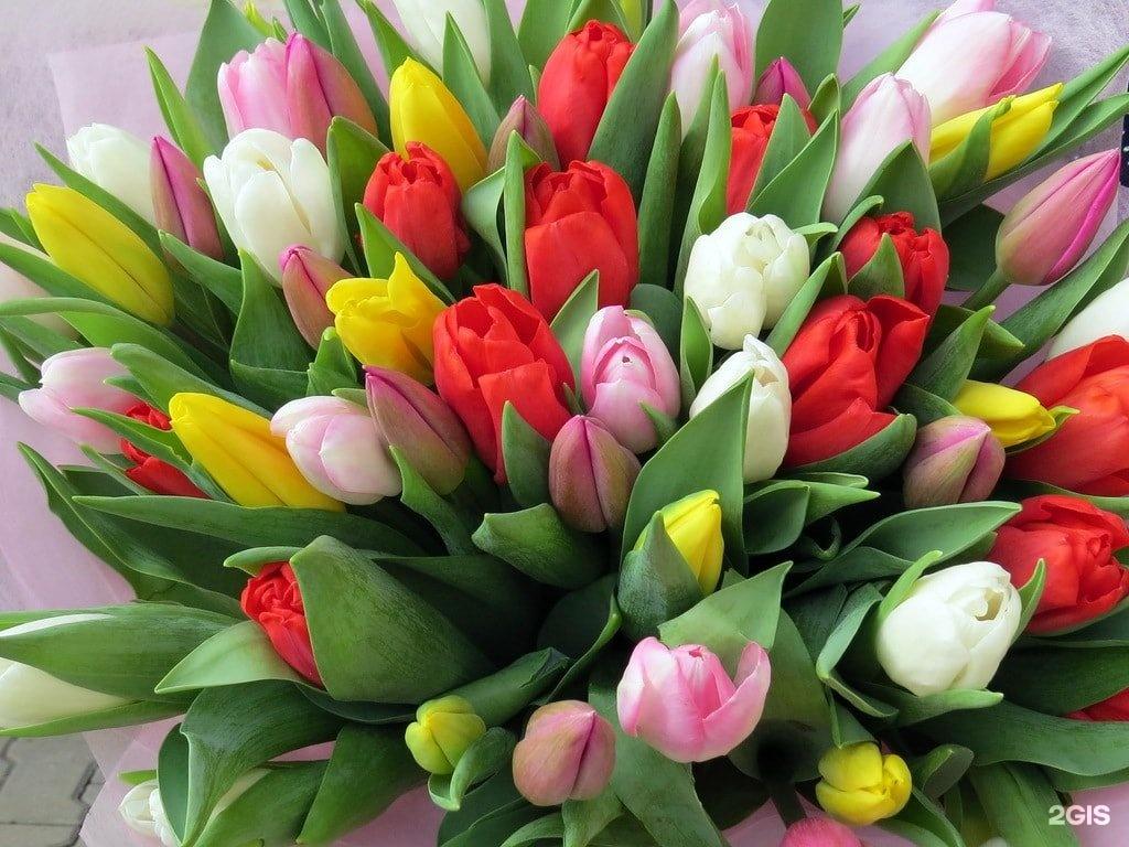 Доме, открытки с весенними цветами фото красивые