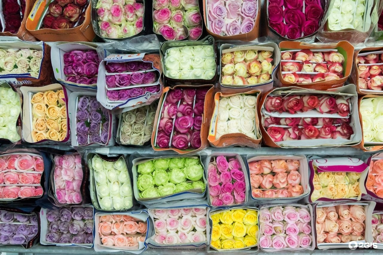 Магазины, срезка цветы оптом
