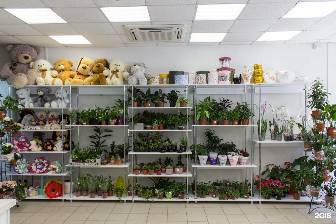 Оптовый магазин цветов нижний новгород