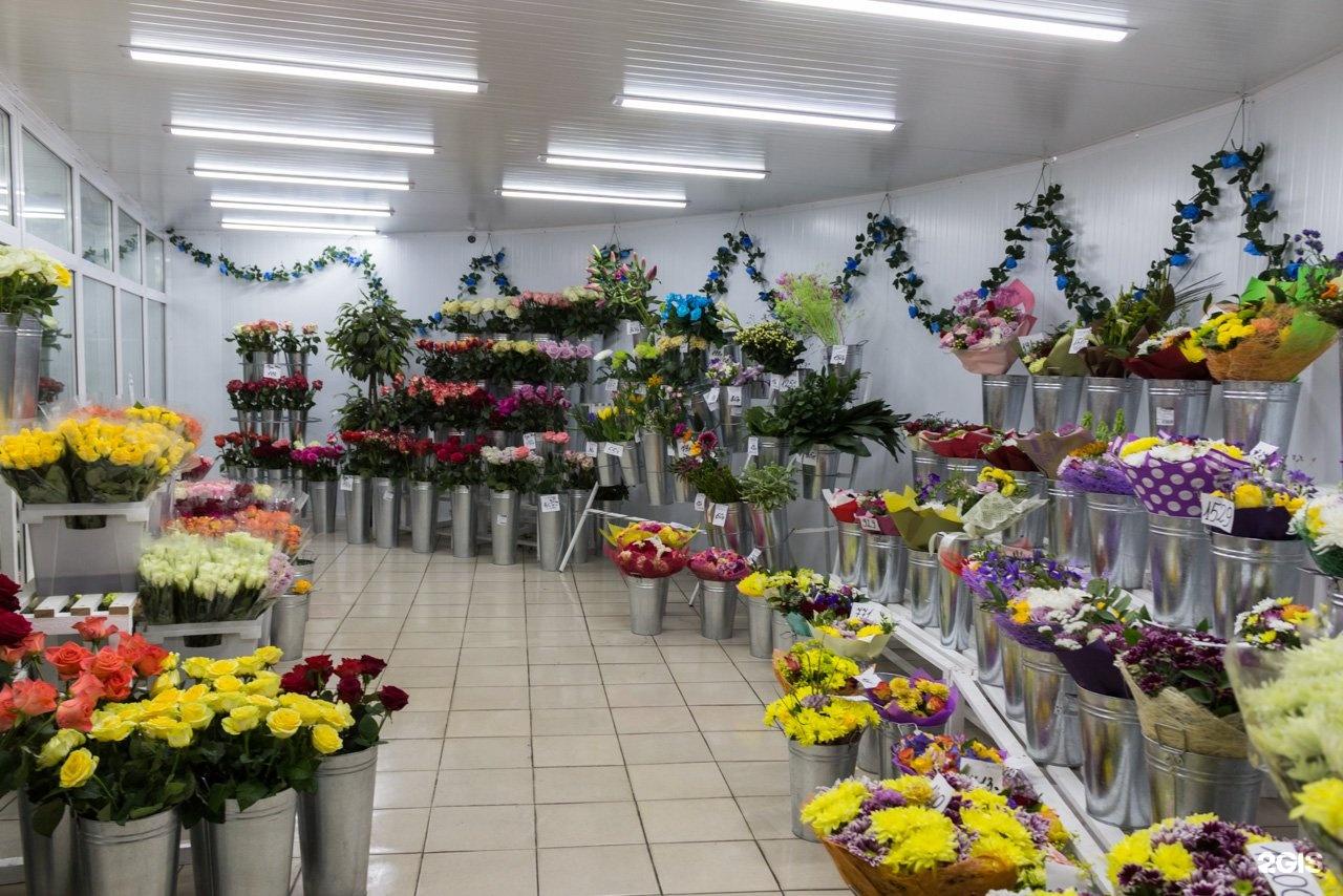 Оптовые базы цветов в ярославле цены