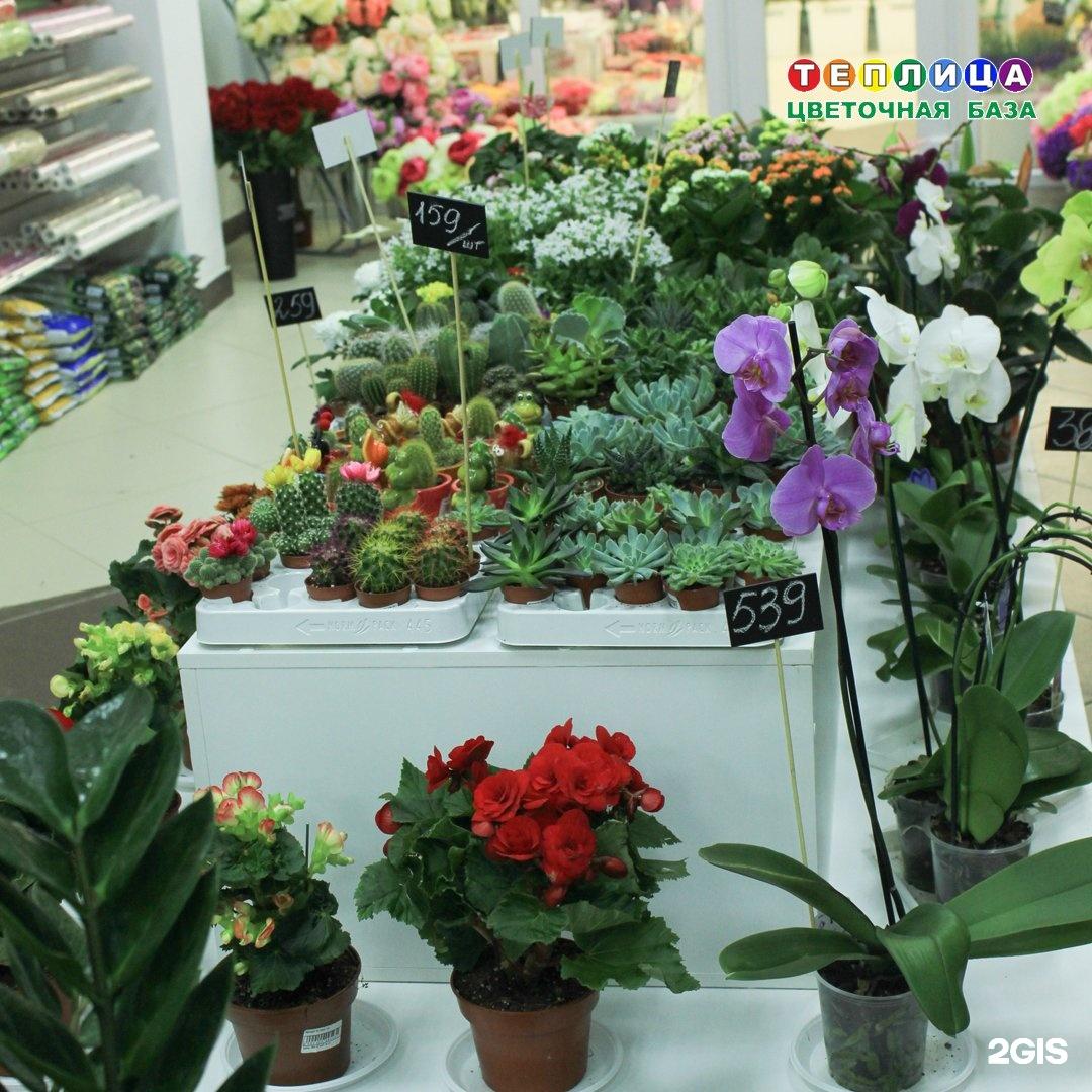 Про букет, оптовая продажа цветов казани