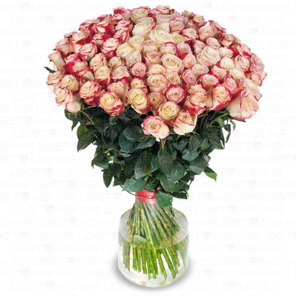 Где купить партию роз с доставкой по россии