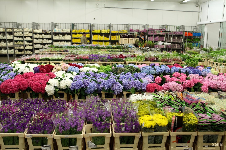 Срезанных, цветы оптом продажа крымске