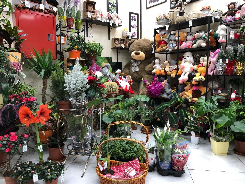 Большие магазины цветов в санкт-петербург