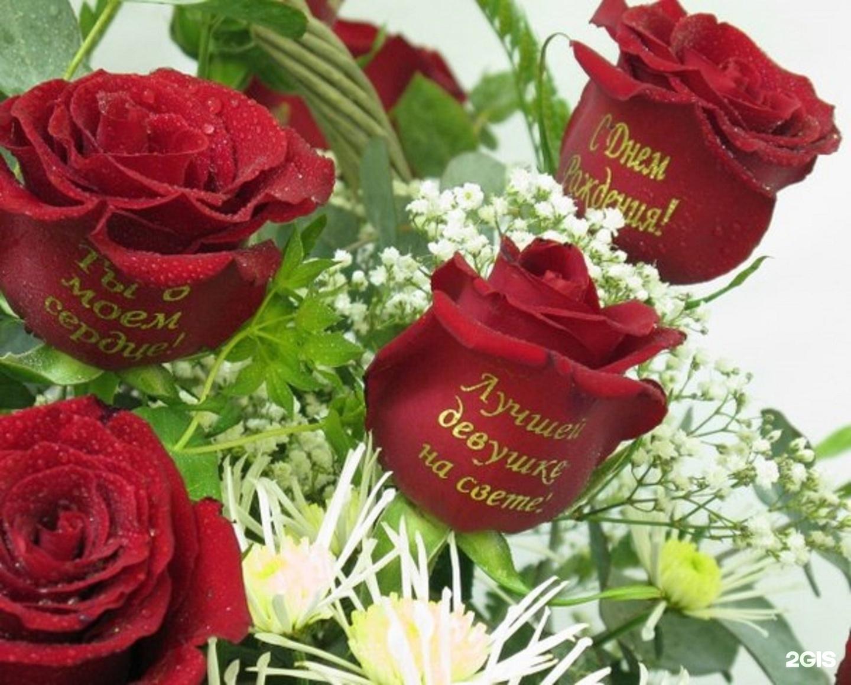 Красивые картинки фото роз с надписью