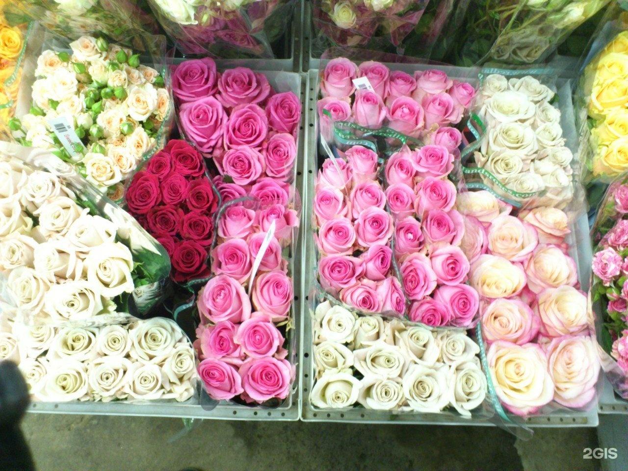 Цветов, где купить оптом цветы барнаул