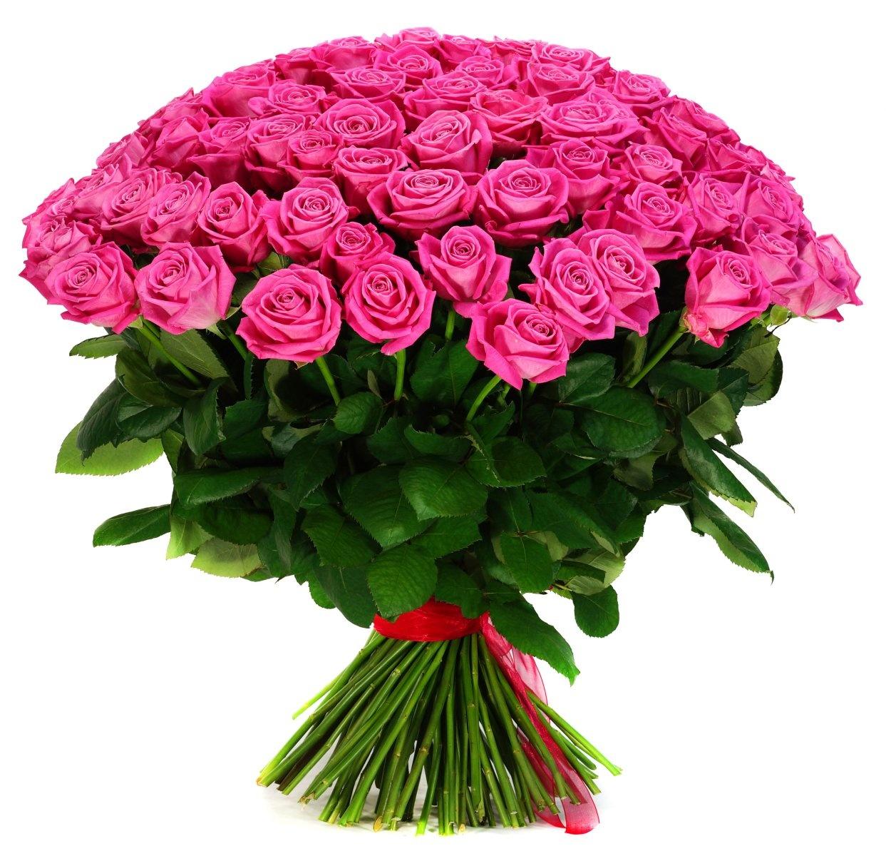 Цветы купить формат, букет орхидея