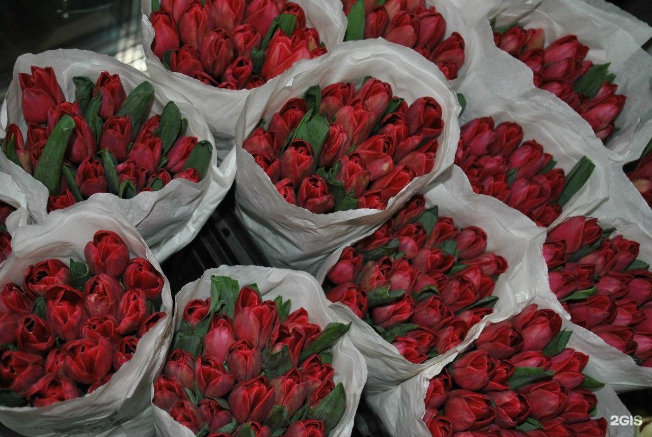 Доставка, цветы оптом в челябинск цены фан фан тюльпан